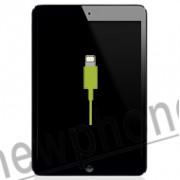 iPad Mini, Dock connector reparatie